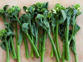 Manfaat Sayur Kailan Bagi Kesehatan